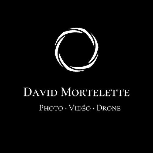 DAVID MORTELETTE
